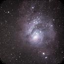 Lagoon Nebula (1st attempt),                                Chris Ryan