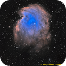 NGC 2174 - Monkey Head Nebula,                                Prath Pavaskar