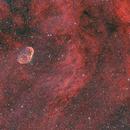 Crescent Nebula in HOO,                                Spencer Hurt