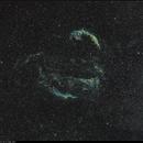 Veil Supernova Complex, SHO+RGB, 30-31 May 2017,                                David Dearden