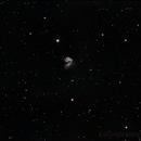 NGC 4038 - Antennae Galaxies,                                Gerson Pinto