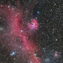 IC 2177 Seagull Nebula,                                Gabriel Siegl