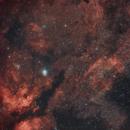 Sadr and Crescent Nebula,                                Martin Konrat