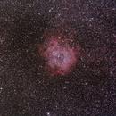 Rosette Nebula,                                pedxing