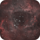 Rosette Nebula,                                Marco Prelini
