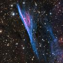 Pencil Nebula from DeepSkyWest,                                Mauricio Christiano de Souza