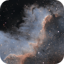 Cygnus Wall in NGC7000 (SHO),                                Guilherme Venere