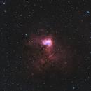 NGC 1491,                                Felix