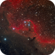 Sh2-264 - Deep Sky West Remote Observatory,                    Deep Sky West (Ll...