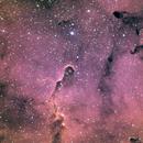 IC1396 La trompe d'éléphant,                                JY
