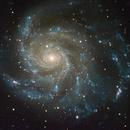 M101,                                ashley