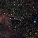 IC1396 Elephant Trunk Nebula,                                Ray Heinle