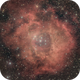 Rosette Nebula,                                Mahesh Kamkanamge
