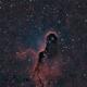ic1396 (elephant's trunk nebula) HOO,                                *philippe Gilberton