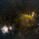 Orion, Horsehead & Flame Nebulae - SHO,                                Jared Holloway