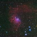 Nebulosa Flaming IC405 ,                                Gianni Carcano
