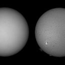 Sunspot AR2665 in Whitelight and Ha,                                Tamas Kriska