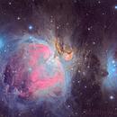 NEAS Orion,                                Matt Jenkins