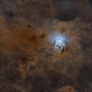 iris 2014 - starless,                                pfile