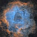 Rosette Nebula SHO,                                Tom Peter AKA Astrovetteman