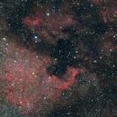 NGC7000 North America Nebula,                                Gebhard Maurer