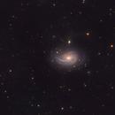 The Nautilus Galaxy, NGC 772,                                flyingairedale