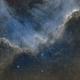 Cygnus Wall,                                John Kroon