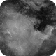 NGC 7000 - North America Nebula in Ha,                                Steve Eltz