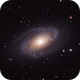 M81 & M82,                                Rhett Herring