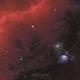M78 & Barnard's Loop,                                Thomas