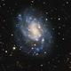 NGC 300,                                Fernando Oliveira...