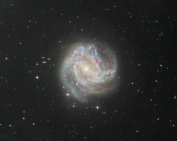 M 83 Galaxie du Moulinet Austral,                                Roger Bertuli