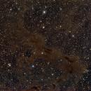 LDN's & NGC 6951,                                Christian Höferlin