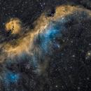 Seagull Nebula,                                  uri