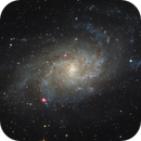 M 33 Triangulum Galaxy,                                  Gabriel Siegl