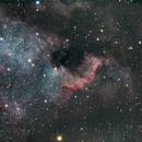 North America Nebula,                                Philip Grant