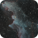An immersion in the Witch Head Nebula IC2118,                                Patrick Dufour