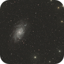 M33,                                Jammie Thouin