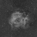 C49 Rosette Nebula-NGC 2237-H-alpha-Canon 70-200 mm 2.8L-ASI 1600 MM-Pro,                                Adel Kildeev