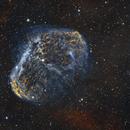 Crescent Nebula (bicolor),                                John Renaud