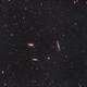 M66 in Leo Triplet,                                Stefano Franzoni