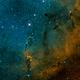 Elephant's Trunk Nebula,                                Derek Foster