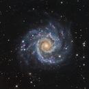 M 74 (NGC 628),                                DetlefHartmann