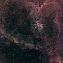 Heart Nebula - IC 1805,                                Jared Wellman