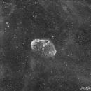 Crescent nebula in Ha,                                Justin Daniel