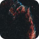 NGC 6995,                                Frank Rogin