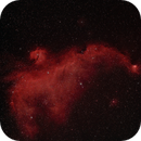 Seagull Nebula with L-eNhance filter,                                Clemley