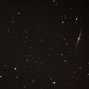Needle Galaxy,                                Michael Lewis
