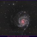 M101 in Ursa major,                                Lensman57