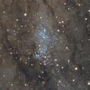 NGC 206 and Globular Clusters in the Andromeda Galaxy,                                Vitali